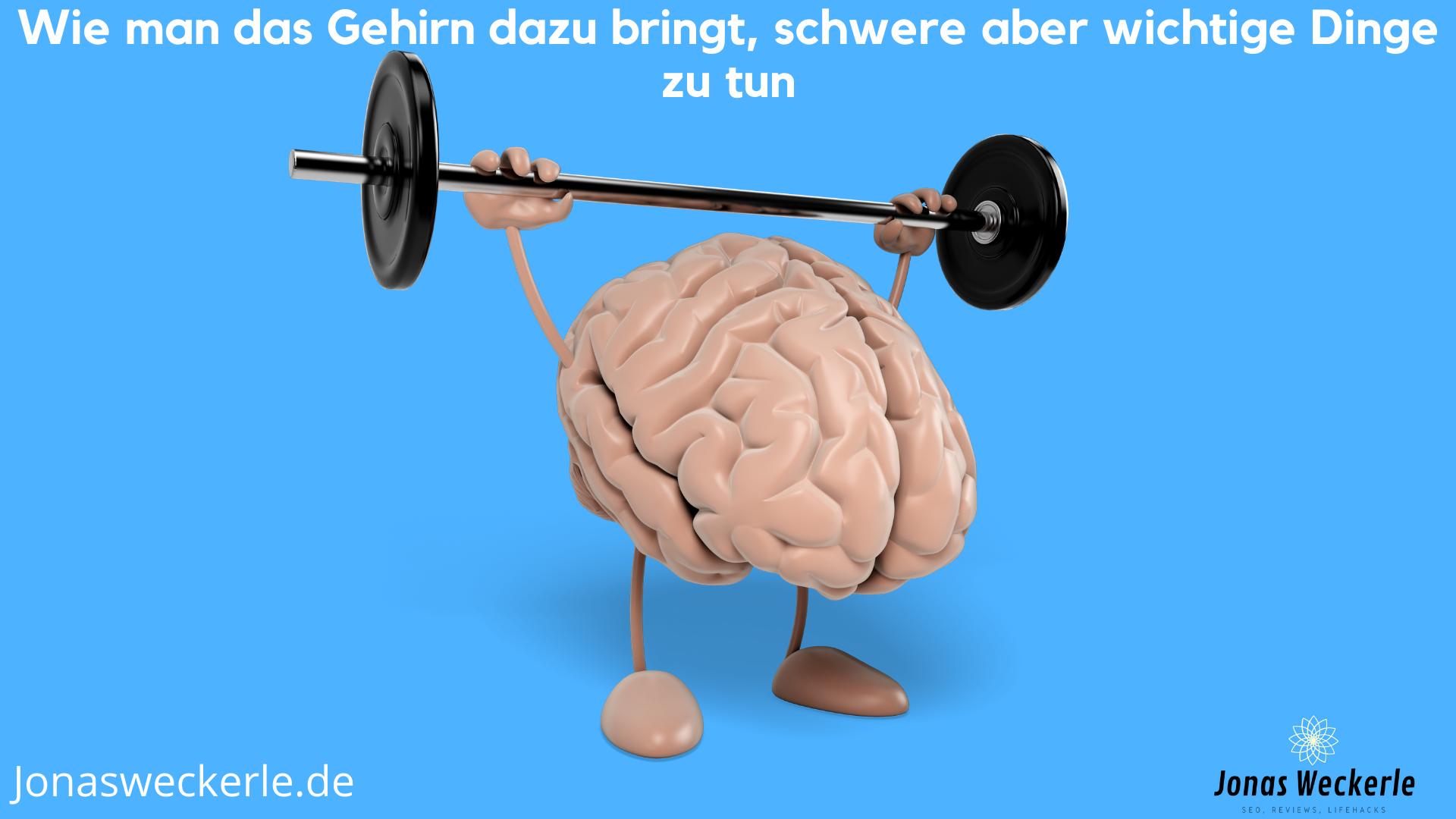 Wie man das Gehirn dazu bringt, schwere aber wichtige Dinge zu tun